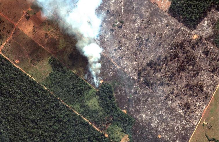 Satellite image 2019 Maxar Technologies